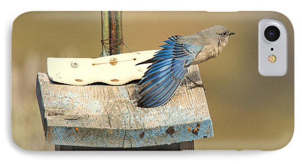 Spread Your Wings IPhone 7 Case by Mike Dawson