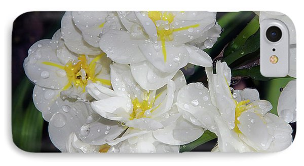 IPhone Case featuring the photograph Spring Flower by Elvira Ladocki