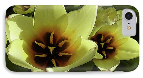 Tulip Lights #4 IPhone Case by Kim Tran