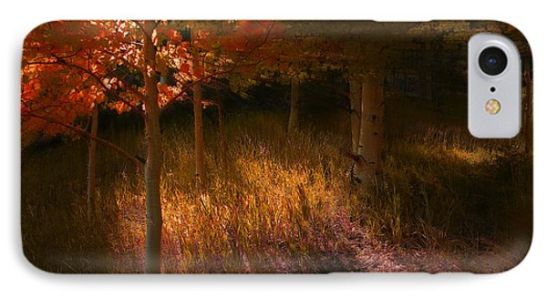 3907 IPhone Case by Peter Holme III