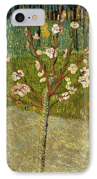 Almond Tree In Blossom IPhone Case by Vincent van Gogh