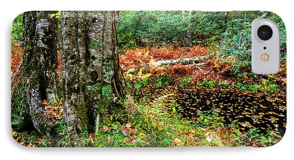 Autumn Upper Shavers Fork Preserve IPhone Case by Thomas R Fletcher