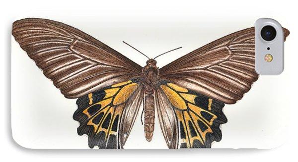 Birdwing Butterfly IPhone Case by Rachel Pedder-Smith