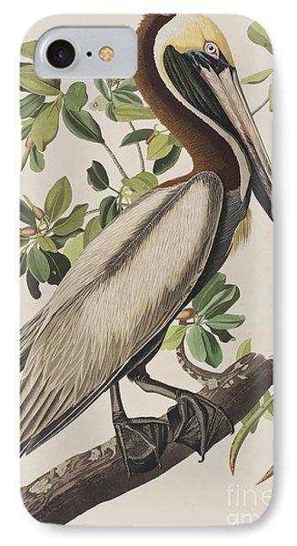 Brown Pelican  IPhone 7 Case