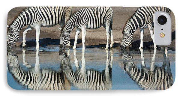 Burchells Zebras Equus Quagga IPhone Case