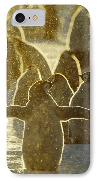Emperor Penguin Aptenodytes Forsteri IPhone Case by Jan Vermeer