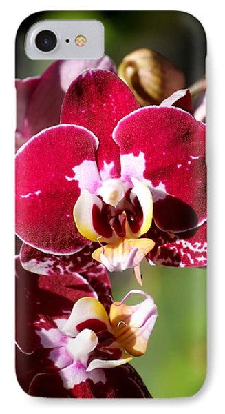 Flower Edition IPhone Case