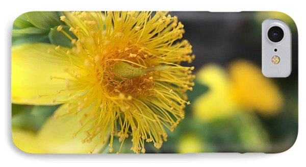 Flower Phone Case by Maxim Tzinman