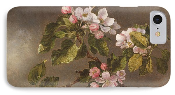 Hummingbird And Apple Blossoms IPhone Case