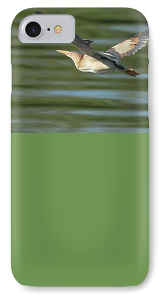 Least Bittern IPhone Case