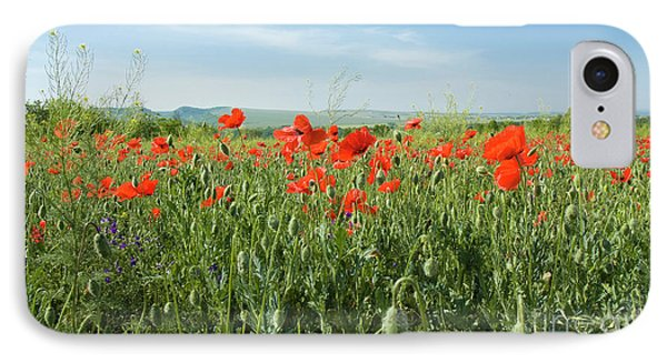 Meadow With Red Poppies IPhone Case