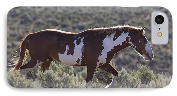 Mustang Stallion IPhone Case by Jean-Louis Klein & Marie-Luce Hubert