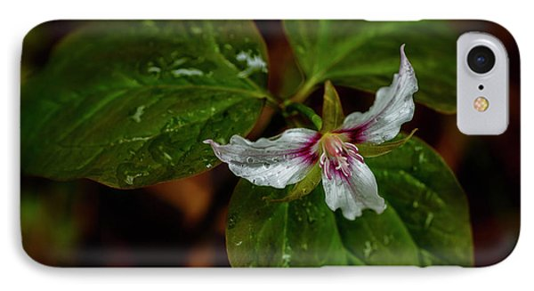 IPhone Case featuring the photograph Painted Trillium  by Thomas R Fletcher