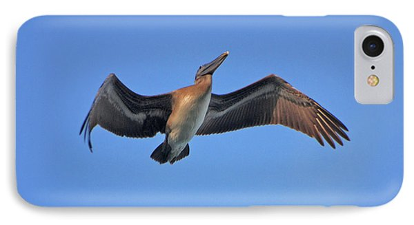 IPhone Case featuring the photograph 4- Pelican by Joseph Keane