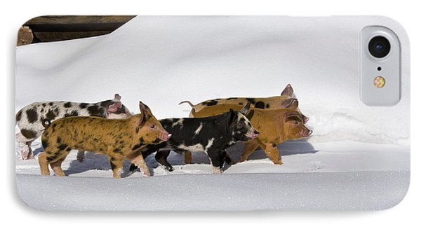 Piglets In The Snow IPhone Case by Jean-Louis Klein & Marie-Luce Hubert