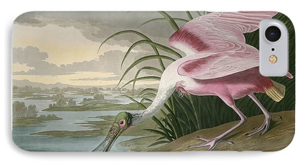 Roseate Spoonbill IPhone 7 Case by Dreyer Wildlife Print Collections