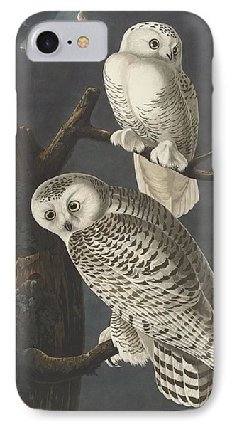 Snowy Owl IPhone Case by Rob Dreyer