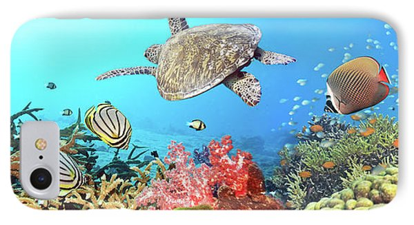 Underwater Panorama IPhone Case by MotHaiBaPhoto Prints