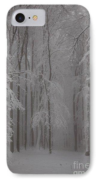 Winter Phone Case by Gabriela Insuratelu