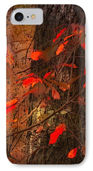 4019 IPhone Case by Peter Holme III
