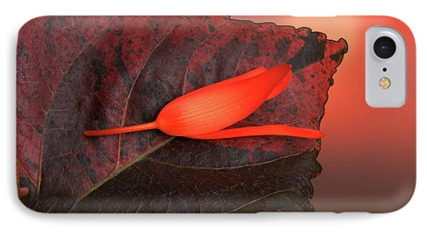 IPhone Case featuring the photograph 4366 by Peter Holme III