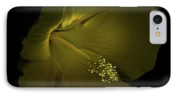 IPhone Case featuring the photograph 4460 by Peter Holme III