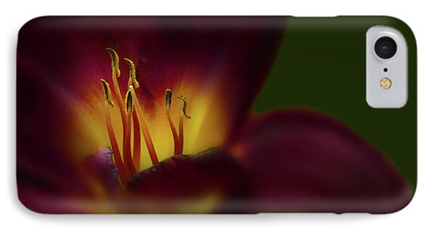 IPhone Case featuring the photograph 4479 by Peter Holme III