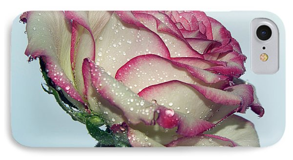 Beautiful Rose IPhone Case by Elvira Ladocki