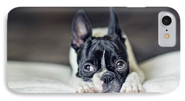Boston Terrier Puppy IPhone 7 Case by Nailia Schwarz