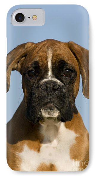 Boxer Puppy IPhone Case by Jean-Louis Klein & Marie-Luce Hubert