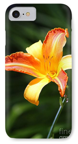 IPhone Case featuring the photograph Day Lily by Irina Hays