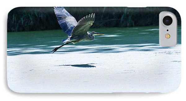 Great Blue Heron In Flight IPhone Case by Edward Peterson