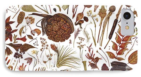 Herbarium Specimen IPhone Case by Rachel Pedder-Smith