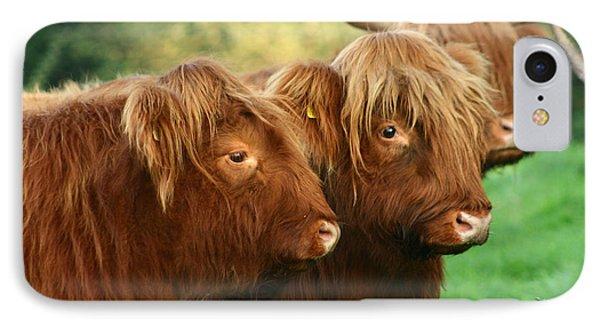 Highland Cattle IPhone Case by Angel  Tarantella