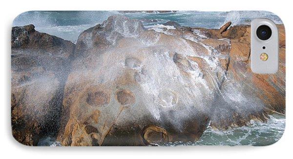Point Lobos Concretions IPhone Case