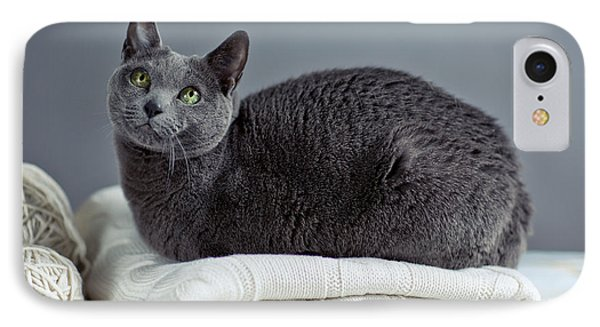 Russian Blue IPhone Case by Nailia Schwarz