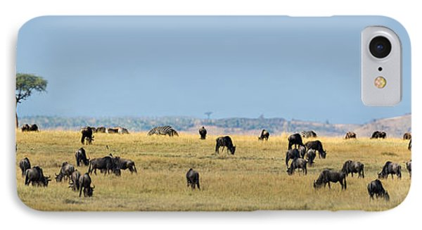Wildebeests Connochaetes Taurinus IPhone Case by Panoramic Images