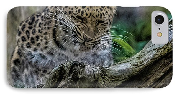 Amur Leopard IPhone 7 Case by Martin Newman