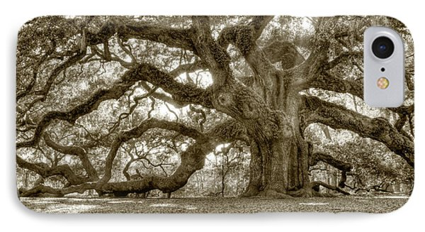 Angel Oak Live Oak Tree IPhone Case by Dustin K Ryan
