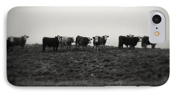 Livestock IPhone Case by Les Cunliffe