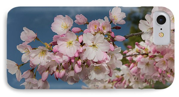 Silicon Valley Cherry Blossoms IPhone Case by Glenn Franco Simmons