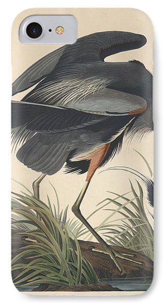 Great Blue Heron IPhone Case by Dreyer Wildlife Print Collections