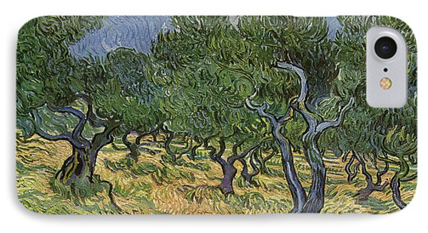 Olive Orchard IPhone Case by Vincent Van Gogh