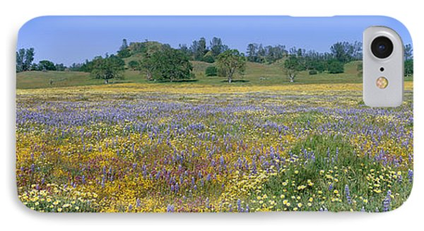 Panoramic View Of Spring Flowers IPhone Case by Panoramic Images