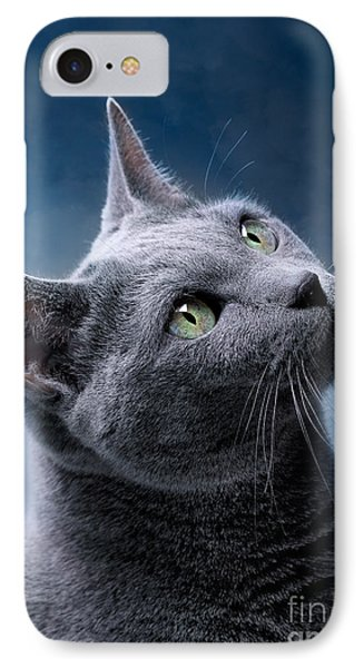 Cat iPhone 7 Case - Russian Blue Cat by Nailia Schwarz