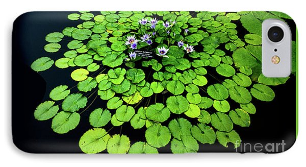 Water Lilies And Lily Pads IPhone Case