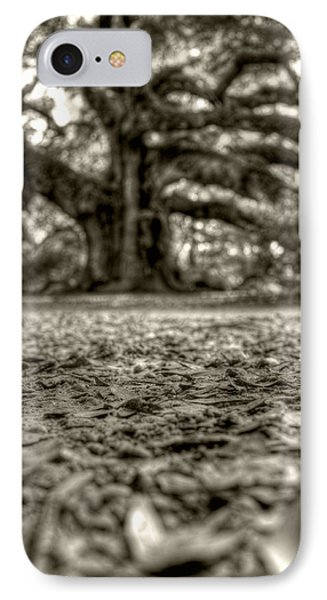 Angel Oak Live Oak Tree Phone Case by Dustin K Ryan