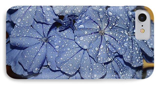 Blue Plumbago IPhone Case by Elvira Ladocki