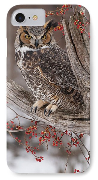 Great Horned Owl Phone Case by Cindy Lindow