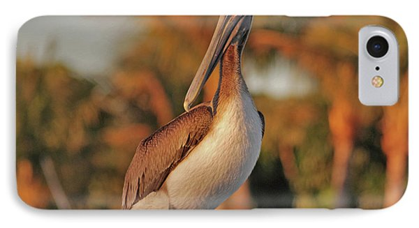 IPhone Case featuring the photograph 9- Brown Pelican by Joseph Keane